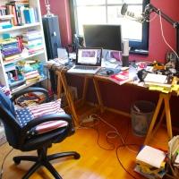 Mit Kakerlaken ins Großraumbüro - Wenn Psychologen Biologie interpretieren
